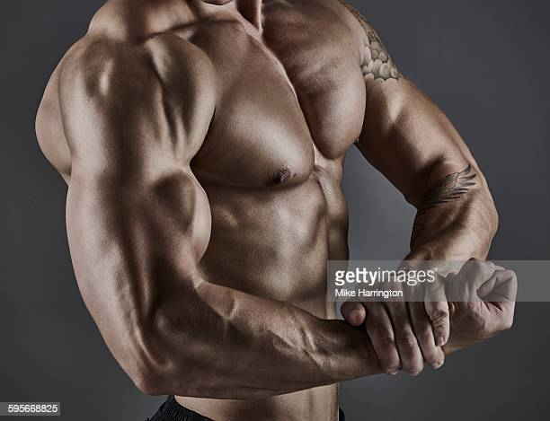 Portrait of muscular male bodybuilder.