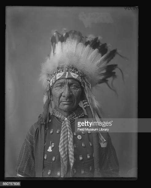 Portrait of Native American Oglala Sioux Long Bull wearing a bead and feather headdress vest and a kerchief around his neck at the Louisiana Purchase...