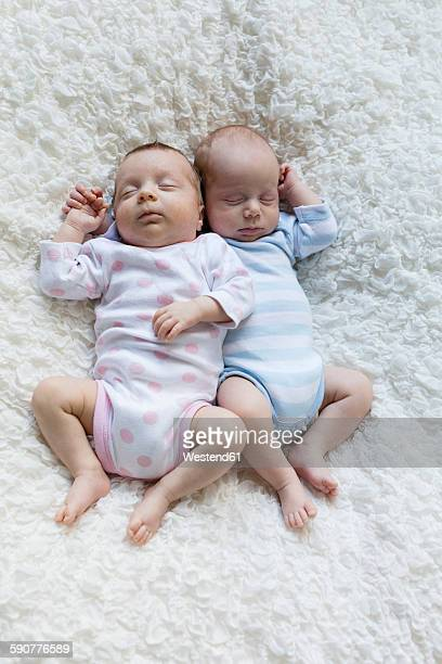 Portrait of newborn twins sleeping side by side