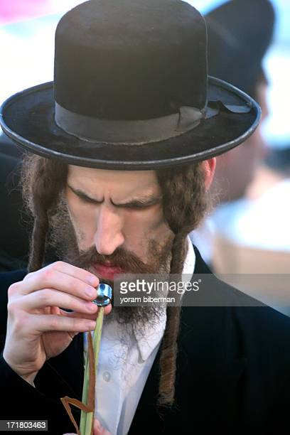 Portrait of nn Ultra-Orthodox man, at the four species market, examining his LULAV, using a magnifying glass. The market takes place before the...