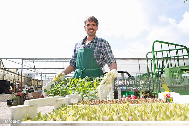 Portrait of organic farmer with trays of seedlings