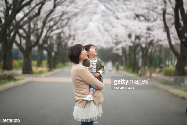 portrait of pregnant mother and child with cherry-blossom trees - cherry blossom in full bloom in tokyo stock pictures, royalty-free photos & images