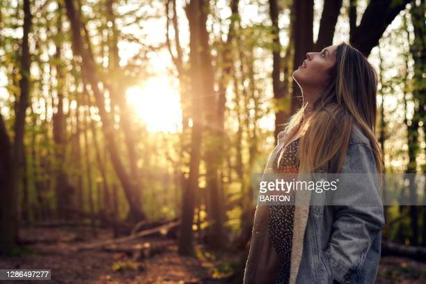 portrait of pregnant woman in woodland - relaxation stock pictures, royalty-free photos & images