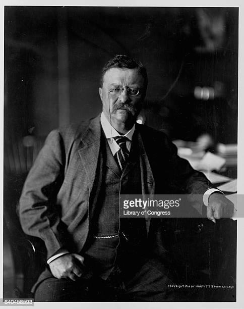 Portrait of president Theodore Roosevelt.