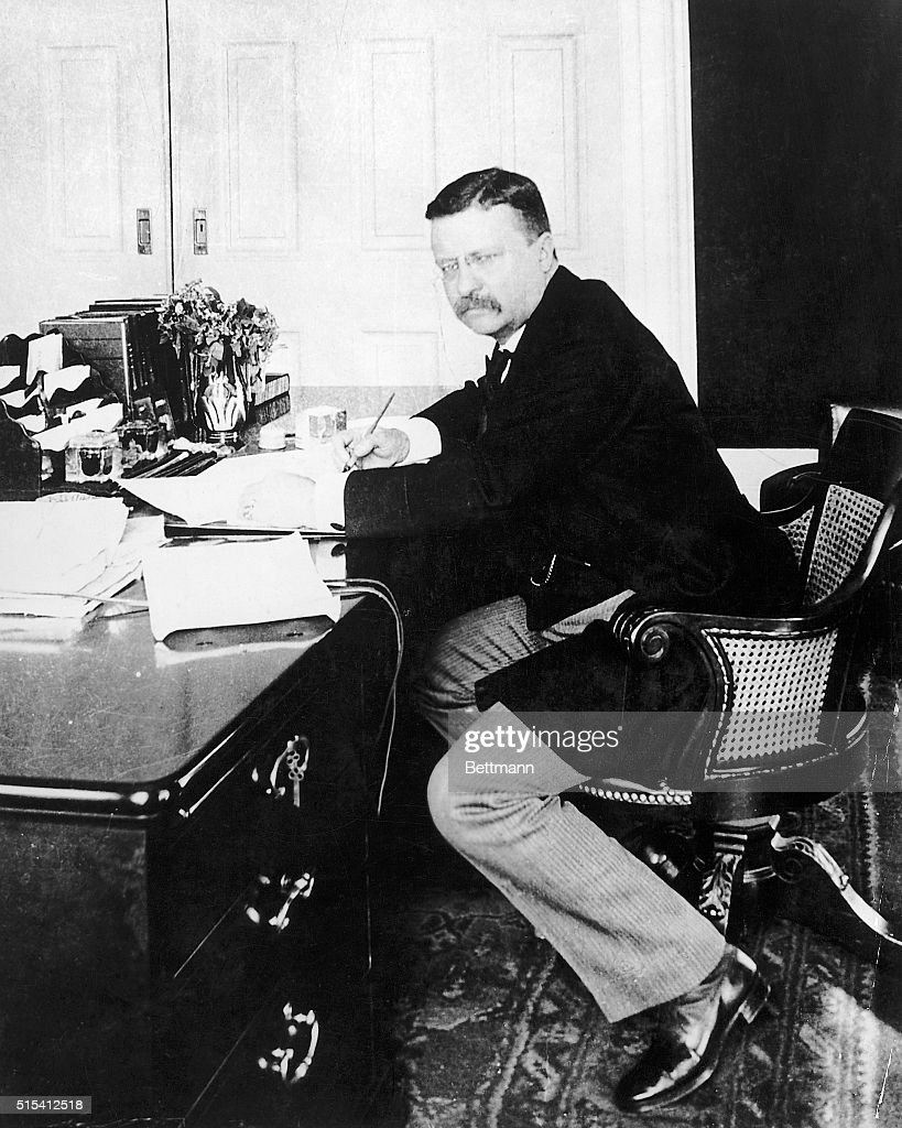 Portrait of President Theodore Roosevelt seated at his desk in the White House. Photograph, 1902.