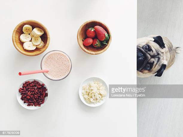 Portrait Of Pug By Healthy Food And Drink On White Table