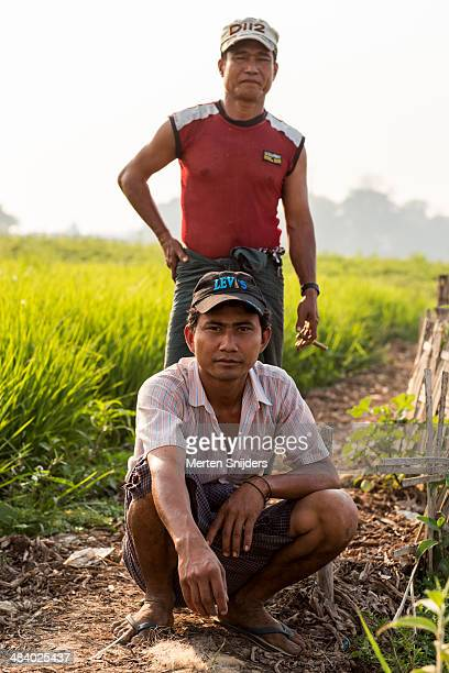 portrait of ricefield workers below u bein bridge - merten snijders stockfoto's en -beelden