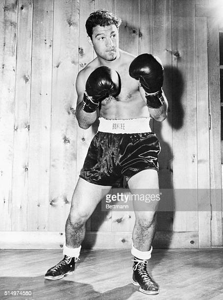 Portrait of Rocky Marciano posing in boxing stance. Undated photograph, circa 1950's.