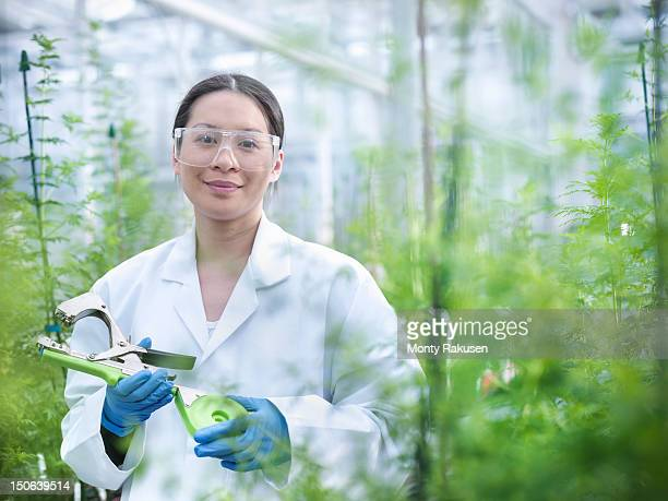 Portrait of scientist in nursery of biolab with Sweet Wormwood (Artemisia annua) grown for structural analysis of DNA, protein extraction and genetic modification