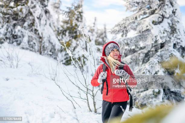 portrait of senior woman hiking in snow covered winter nature, walking. - cold temperature stock pictures, royalty-free photos & images