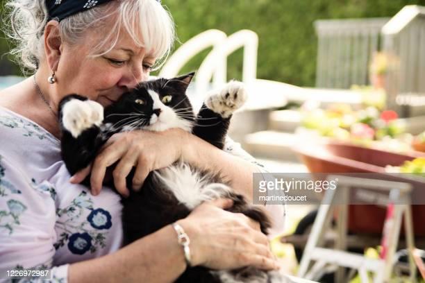 """retrato de mujer mayor sosteniendo a su gato en el patio trasero. - """"martine doucet"""" or martinedoucet fotografías e imágenes de stock"""