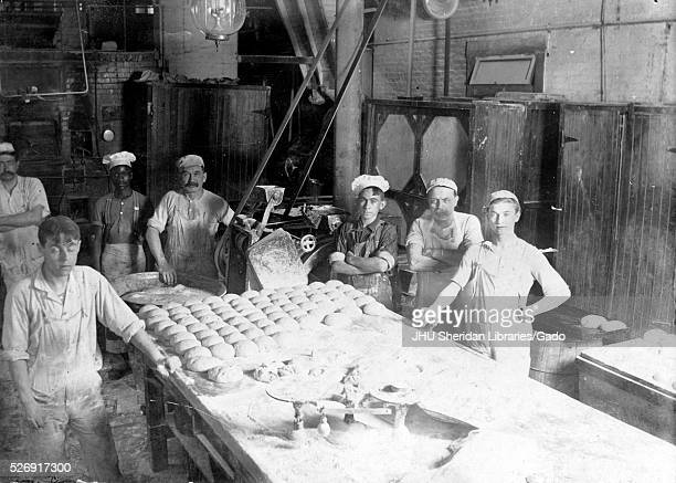 Portrait of seven bakers standing behind a large table of kneaded dough working in a brick cellar wearing white hats all looking up from their labor...