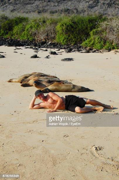 Portrait Of Shirtless Young Man Relaxing By Seal At Beach