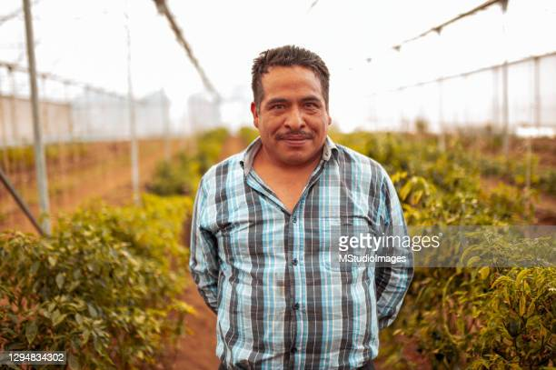 portrait of smiled farm worker - farm worker stock pictures, royalty-free photos & images