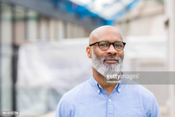 portrait of smiling businessman with beard wearing glasses - oudere mannen stockfoto's en -beelden