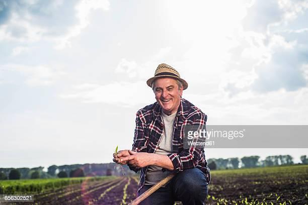 Portrait of smiling farmer in a field holding crop