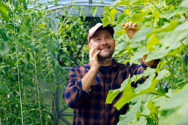 Portrait of smiling farmer on the phone in a greenhouse