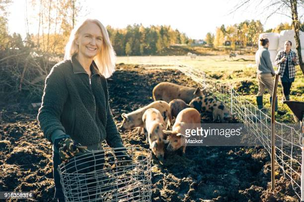 portrait of smiling female farmer holding empty basket with pigs grazing at organic farm - medium group of animals stock pictures, royalty-free photos & images
