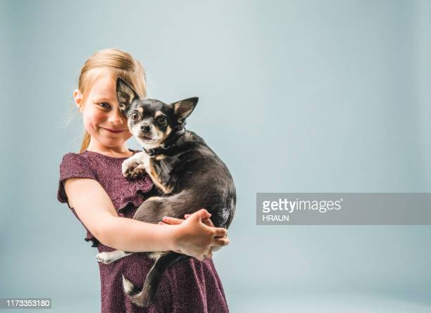 portrait of smiling girl carrying chihuahua - chihuahua dog stock pictures, royalty-free photos & images