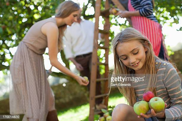portrait of smiling girl holding apples in orchard - orchard stockfoto's en -beelden