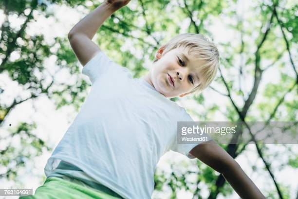 Portrait of smiling little boy climbing on tree