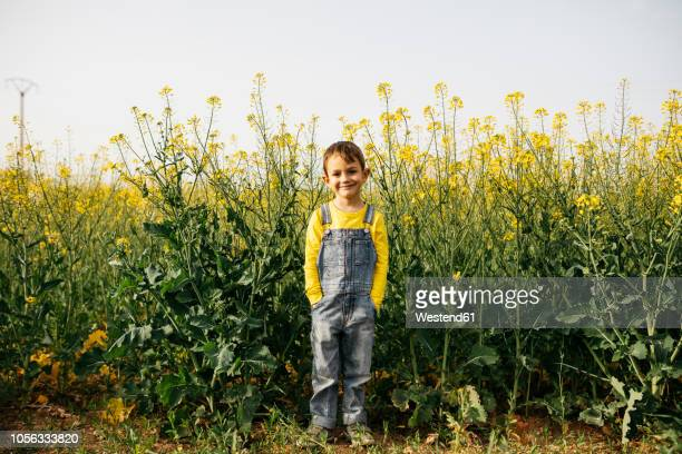 Portrait of smiling little boy standing in front of blooming rape field