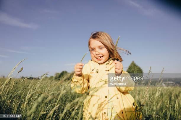 portrait of smiling little girl on meadow - onschuld stockfoto's en -beelden