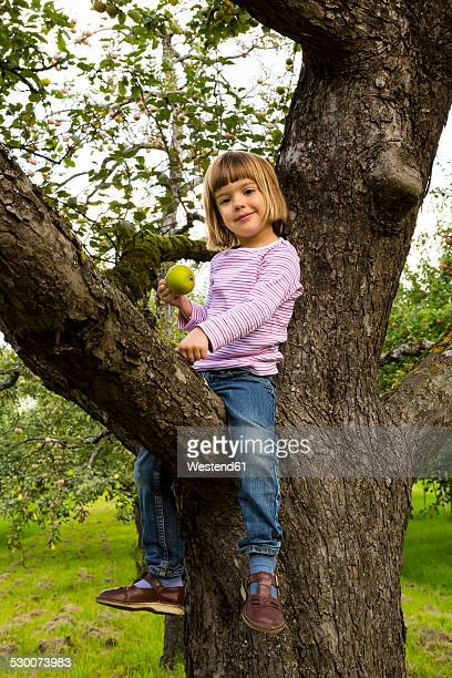 Portrait of smiling little girl with an apple sitting on an apple tree