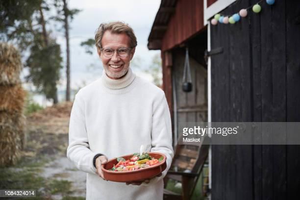 portrait of smiling mature man holding fresh salad in plate at farm during dinner party - parte do meio - fotografias e filmes do acervo
