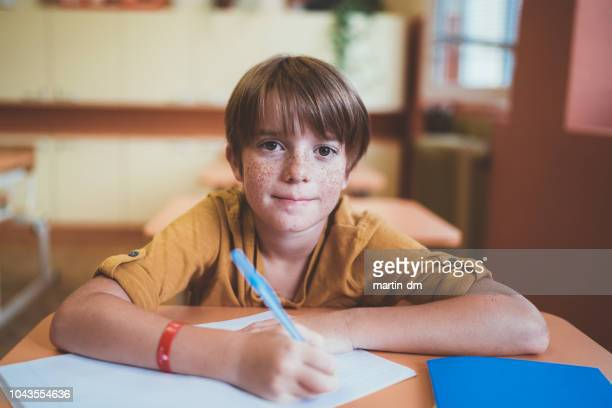 portrait of smiling schoolboy with freckles in the classroom - schoolboy stock pictures, royalty-free photos & images