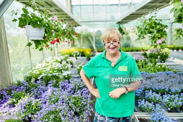 portrait of smiling senior woman in a garden center - frau 65 jahre stock-fotos und bilder