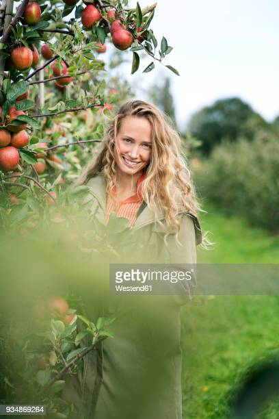 portrait of smiling woman in apple orchard - variable schärfentiefe stock-fotos und bilder