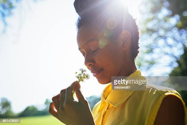portrait of smiling young woman smelling flowers - smelling stock pictures, royalty-free photos & images