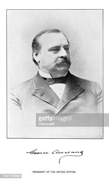 portrait of stephen grover cleveland, 22nd and 24th president of the united states (1885–1889 and 1893–1897) - president stock pictures, royalty-free photos & images