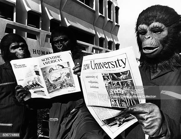 Portrait of supporting actors wearing monkey masks and reading scientific magazines on the set of the movie 'Conquest of the Planet of the Apes'...