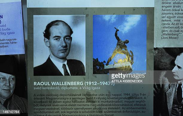 A portrait of Swedish diplomat Raoul Wallenberg who saved thousands of Hungarian Jews from the Nazis but disappeared in Soviet hands after 1945 is...