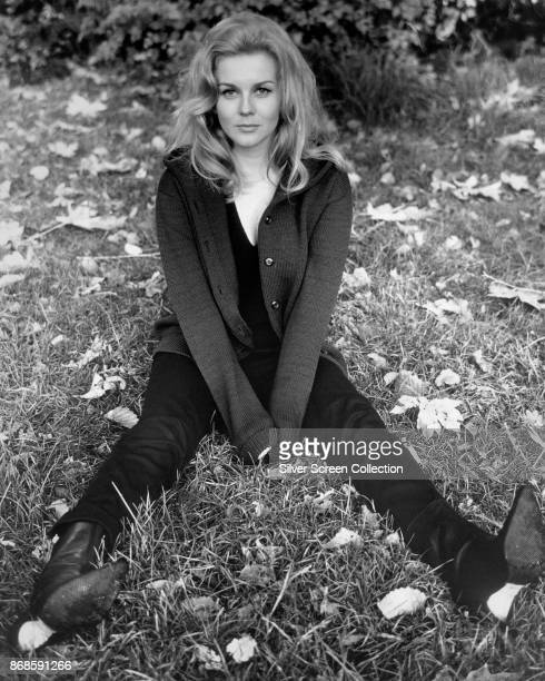 Portrait of SwedishAmerican actress AnnMargret as she sits on the grass on the set of 'Carnal Knowledge' 1971