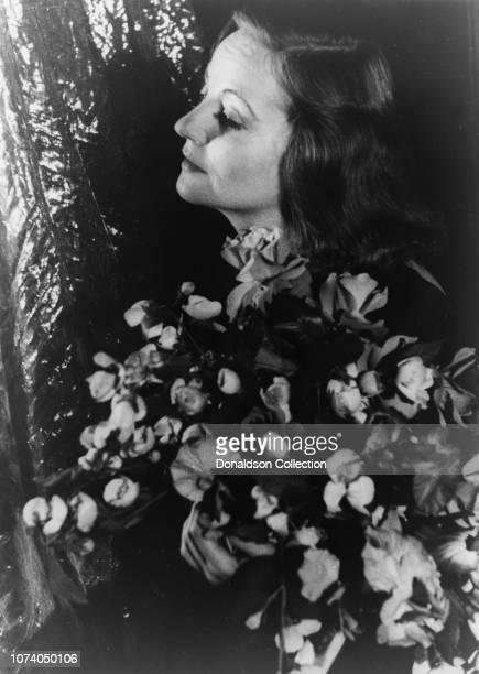 Portrait of Tallulah Bankhead holding floral bouquet with foliage backdrop