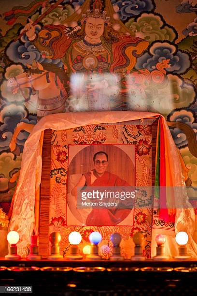 portrait of the dalai lama inside temple - merten snijders 個照片及圖片檔