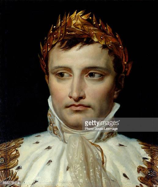 Portrait of the emperor Napoleon I Bonaparte Painting by Jacques Louis David oil on canvas 19th century Fondation Thiers Paris France