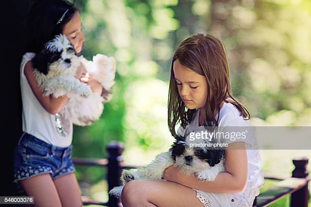Portrait of the little girl with her dog