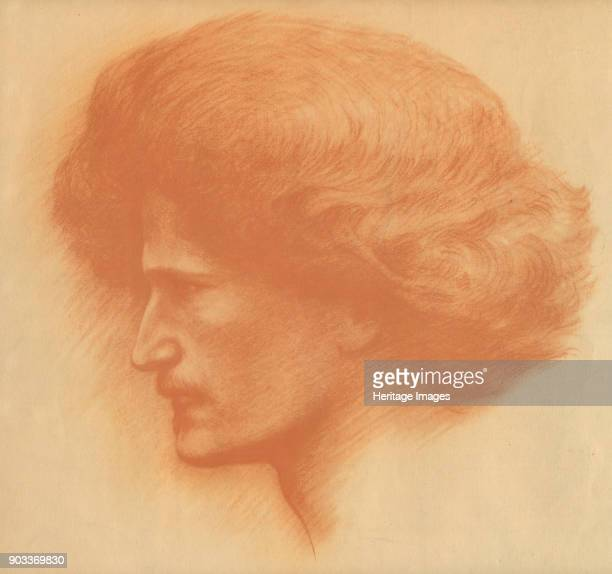 Portrait of the pianist composer and politician Ignacy Jan Paderewski Private Collection