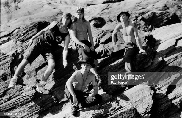 Portrait of the Red Hot Chili Peppers, clockwise from upper left, Chad Smith, Anthony Kiedis, John Frusciante, and Flea in Central Park in New York,...