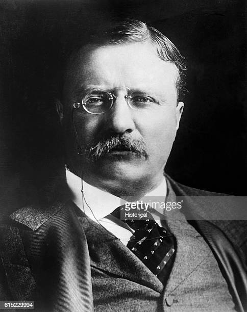 A portrait of Theodore Roosevelt 26th President of the United States Roosevelt William McKinley's vice president was propelled into office by...