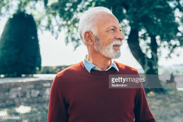 思慮深い先輩の肖像 - あごヒゲ ストックフォトと画像