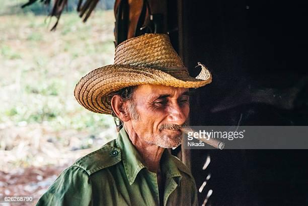 portrait of tobacco farmer smoking cigar, cuba - valle de vinales stock-fotos und bilder