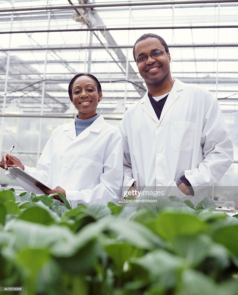 Portrait of Two Botanists in a Greenhouse : Stock Photo