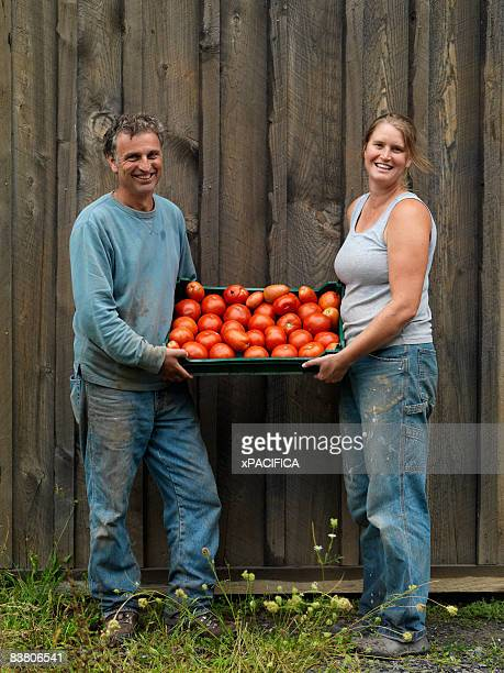 Portrait of two farmers holding a tray of tomatoes