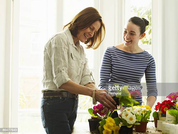 portrait of two women potting plants - adults only stock pictures, royalty-free photos & images