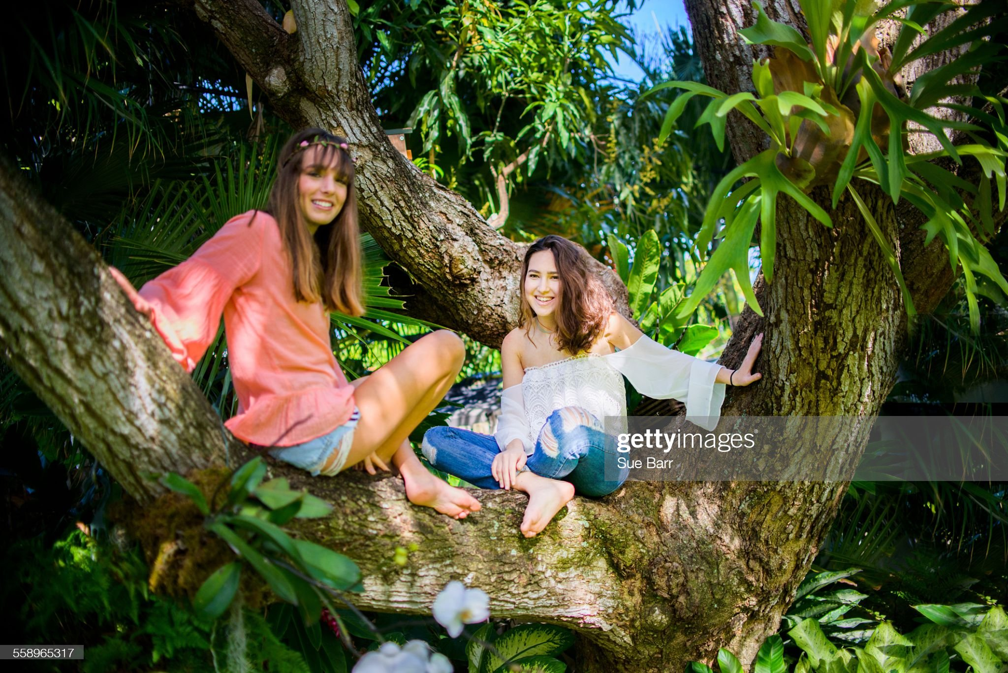 https://media.gettyimages.com/photos/portrait-of-two-young-female-friends-sitting-cross-legged-in-tree-picture-id558965317?s=2048x2048